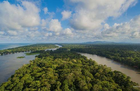 Arial Views of Tortuguero